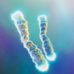 Initial Success with Telomere supplement Product B