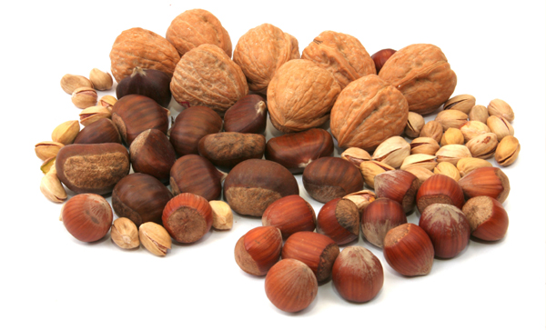 Consumption of nuts promotes health and longevity, finds study