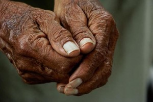 Spanish, Japanese centenarians reveal genetic key to longevity
