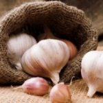 Garlic the key to anti-aging your brain?