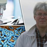 Ancient 'ETERNAL LIFE' bacteria leaves Russian scientist 'ILLNESS-FREE'
