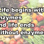 Enzymes: The Spark of Life (Chi) and Their Role in Health and Longevity