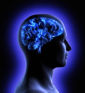 Hypothalamus: Brain region may hold key to aging