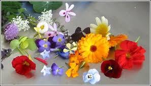 Edible flowers may inhibit chronic diseases