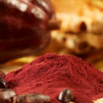 Chocolate compound restores age-related memory loss